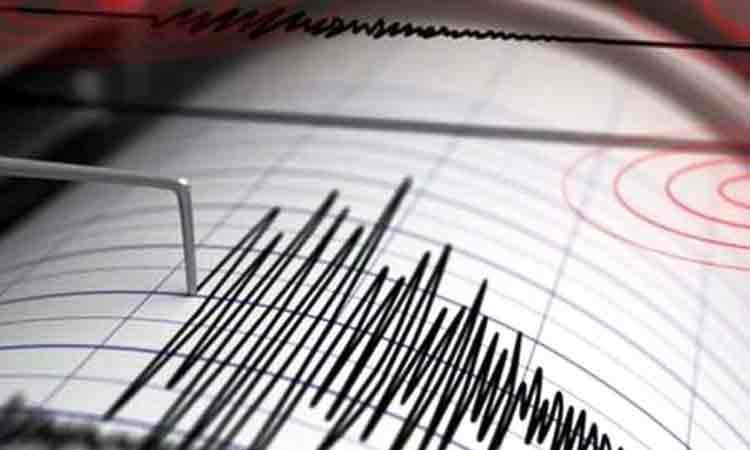 ULTIMA ORA: Un nou cutremur in Romania. Unde s-a produs si ce magnitudine a avut