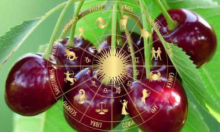 Horoscop 3 septembrie. Toamnă fierbinte și plină de ...  |Horoscop 14 August 2020