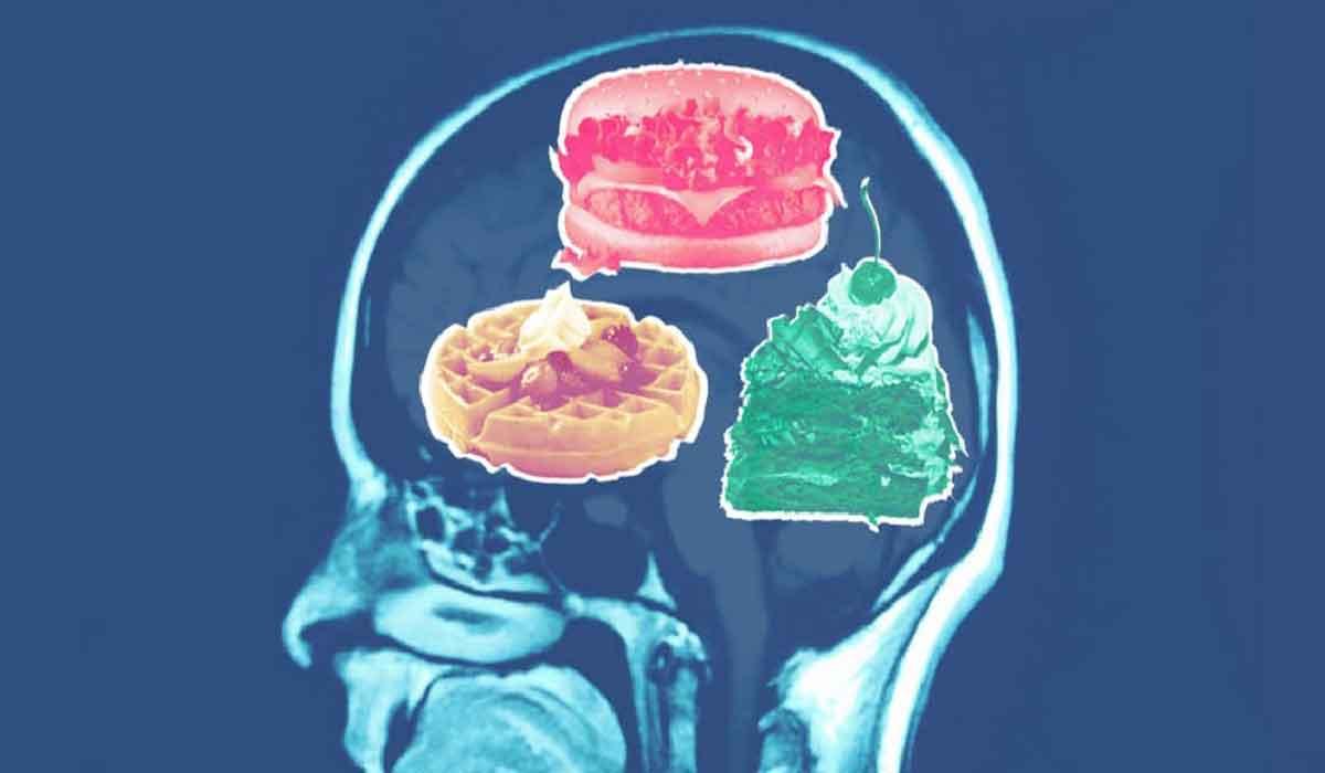 pierderea de grăsimi creierului)