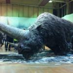 Elasmotherium, Unicornul Siberian