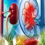 Mananca aceste 7 alimente, iar rinichii, ficatul si pancreasul tau iti vor multumi