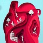 Iata tot ce poti face pentru ca inima ta sa traiasca mult si fara griji