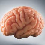 15 fapte amuzante despre creier pe care nu le stiai
