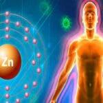 Zincul este un oligoelement esential pentru corpul uman