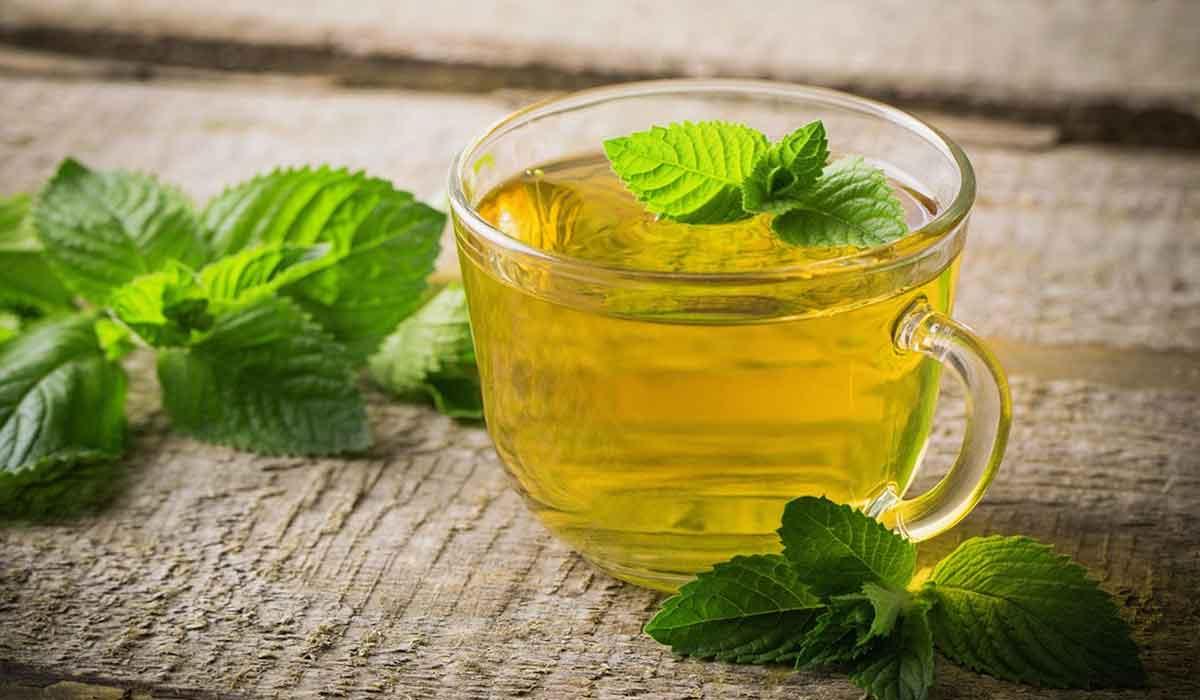 ceaiul de menta ajuta cu pierderea in greutate)