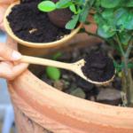 Nu arunca zatul de cafea pentru ca poate fi folosit la treburile casnice
