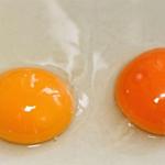 Ce poate indica culoarea galbenusului de ou despre calitatea acestuia