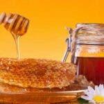 Ce se intampla in corpul tau daca mananci miere in fiecare zi ?