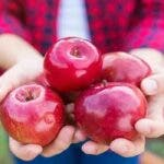 Beneficiile merelor si cum sa le consumati pentru a obtine cele mai multe beneficii